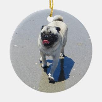 Sid el barro amasado en la playa del perro, San Di Ornamentos De Reyes Magos