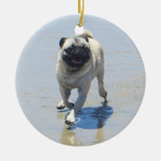 Sid el barro amasado en la playa del perro, San Di Ornamentos De Reyes