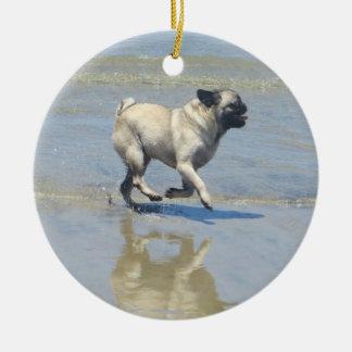 Sid el barro amasado en la playa del perro, San Di Ornamente De Reyes