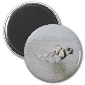 Sid el Puggy en la playa Imán Redondo 5 Cm