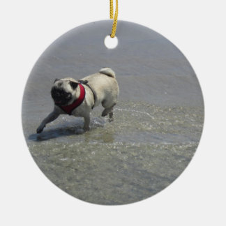 Sid la foto de la playa del barro amasado - Sid el Ornamento Para Reyes Magos