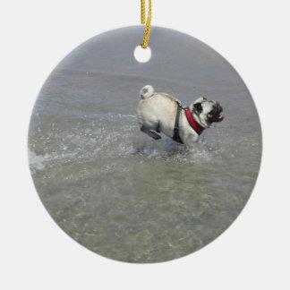 Sid la foto de la playa del barro amasado - Sid el Ornamento De Reyes Magos