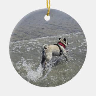 Sid la foto de la playa del barro amasado - Sid el Adorno De Reyes