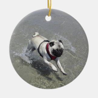 Sid la foto de la playa del barro amasado - Sid el Ornamentos De Reyes Magos