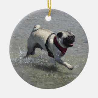 Sid la foto de la playa del barro amasado - Sid el Adorno