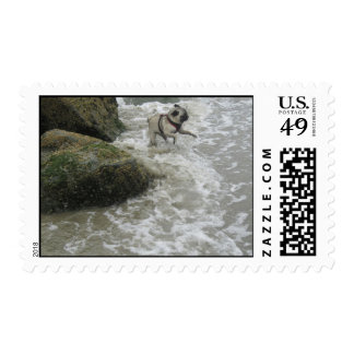 Sid Precious at the Beach Postage Stamp