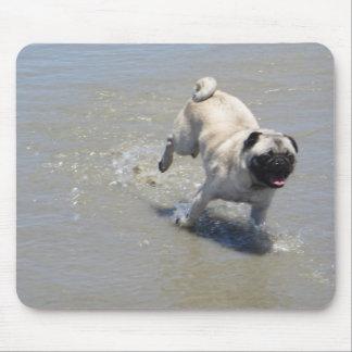 Sid the Pug at Dog Beach, San Diego, CA Mouse Pad