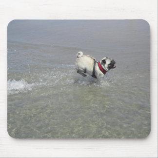 Sid the Pug's Beach Photo - Sid the Puggy Rocket Mouse Pad