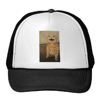 Sid the Shark Trucker Hat