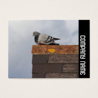 Side Band - Good Morning Pigeon Business Card