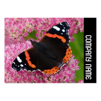 Side Band - Red Admiral on Sedum (Autumn Joy) Business Card Templates
