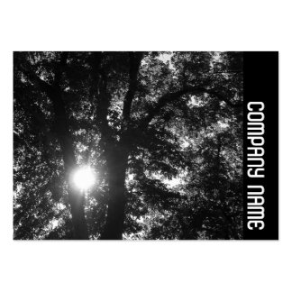 Side Band - Sun Through Trees B&W Large Business Cards (Pack Of 100)