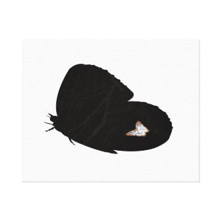 Side butterfly shape with moth pic canvas print