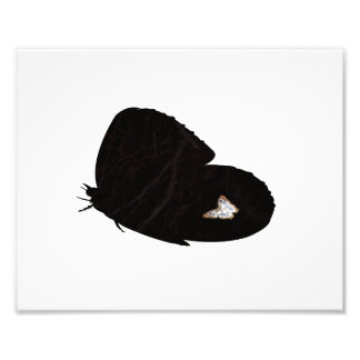 Side butterfly shape with moth pic photo print