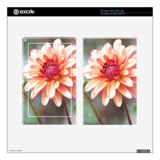 Side by Side Decals For Kindle Fire