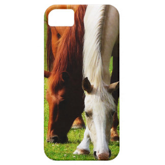Side by Side Horses  Brown and White iPhone SE/5/5s Case