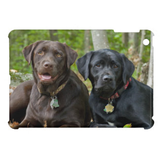 Side By Side Labrador Retriever Dogs Outside iPad Mini Cover
