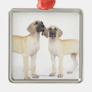 side by side,small group of animals,togetherness metal ornament
