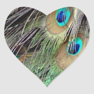 Side Feathers Of A Peacock Heart Sticker