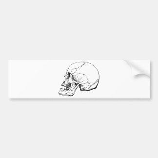 Side of Skull Bumper Sticker