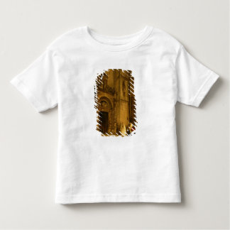 Side portal of Como Cathedral, 1850 Toddler T-shirt