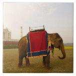 Side profile of an elephant, Taj Mahal, India Large Square Tile