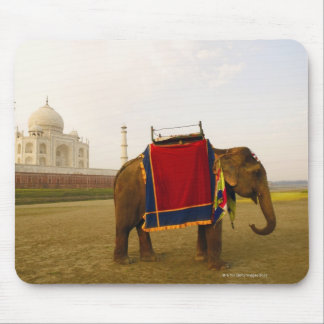Side profile of an elephant Taj Mahal India Mouse Pads