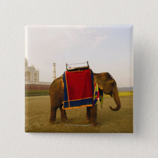 Side profile of an elephant, Taj Mahal, India Pinback Button