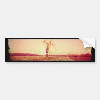 Side Road Tree Bumper Sticker