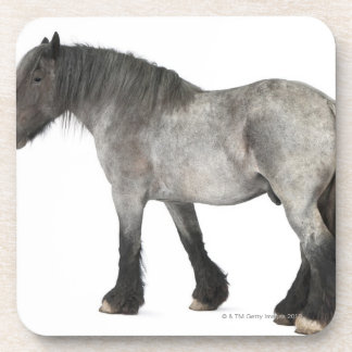 Side view of a Belgian horse, Belgian Heavy Beverage Coaster