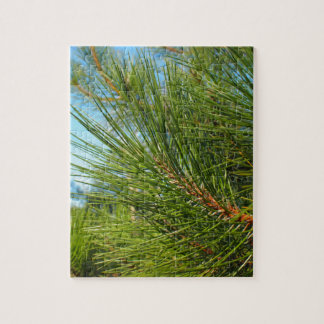 Side view of a pine branch with long needles puzzle