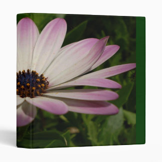 Side View of A Pink and White Osteospermum 3 Ring Binder
