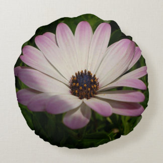 Side View of A Pink and White Osteospermum Round Pillow