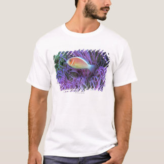 Side view of a pink anemone fish, Okinawa, Japan T-Shirt