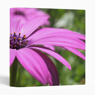 Side View Of A Purple Osteospermum With Garden Bac 3 Ring Binder