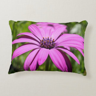 Side View Of A Purple Osteospermum With Garden Bac Accent Pillow