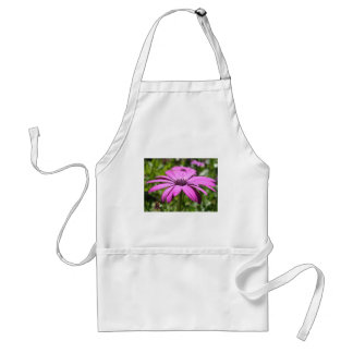 Side View Of A Purple Osteospermum With Garden Bac Adult Apron
