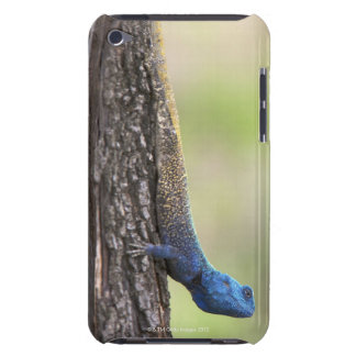 Side view of a Tree Agama (Acanthocerus iPod Touch Covers