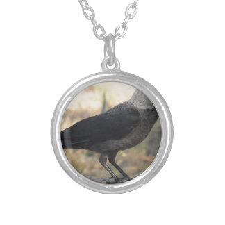 Side View Of A Wild Jackdaw Round Pendant Necklace