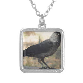 Side View Of A Wild Jackdaw Square Pendant Necklace