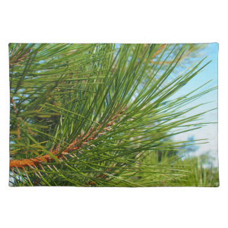 Side view of a young pine tree branch with long ne cloth placemat