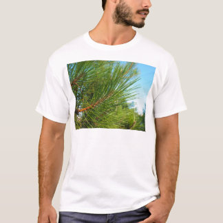 Side view of a young pine tree branch with long ne T-Shirt