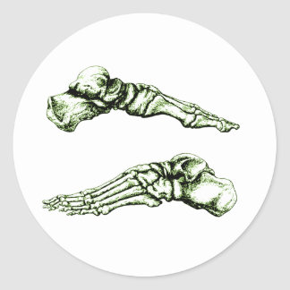 Side view of bones of the feet - green classic round sticker