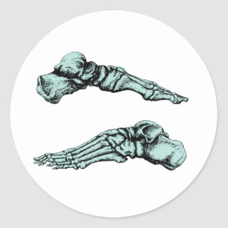Side view of bones of the feet - sea green classic round sticker