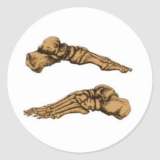 Side view of bones of the feet - sepia classic round sticker