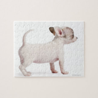 Side view of Chihuahua Puppy (10 weeks old) Jigsaw Puzzle