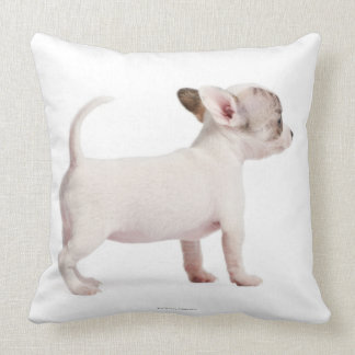 Side view of Chihuahua Puppy (10 weeks old) Throw Pillow