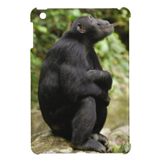Side View Of Chimpanzee (Pan Troglodytes) Cover For The iPad Mini