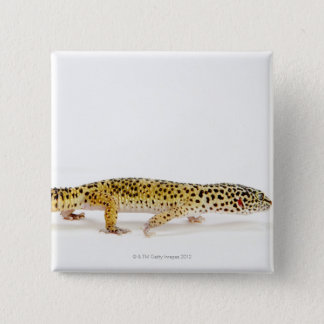 Side view of leopard gecko lizard pinback button