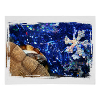 Sideneck Turtle eyeing a star on blue tinsel Posters